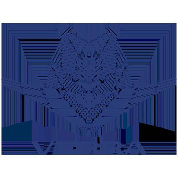 Верра-Моторс